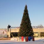 Новогодние гуляния в Домодедово