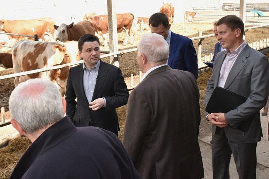 Андрей Воробьев посетил племзавод «Барыбино»