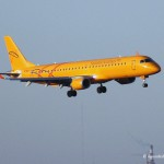 В двигатель самолета в Домодедово попала птица