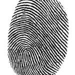 Государственная услуга по проведению добровольной государственной дактилоскопической регистрации