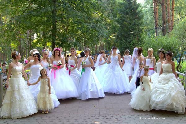 Парад Невест (12)