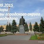 Выборы Главы городского округа Домодедово
