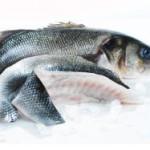В Домодедово задержана партия охлажденной рыбы