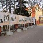 В Домодедово открылась выставка фотоконкурса МВД России «Открытый взгляд»