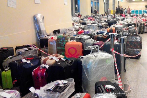 Багаж из Египта