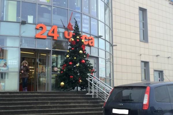 В Домодедово стартовала операция «Елки»