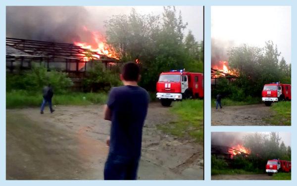 Пожар в Житнево