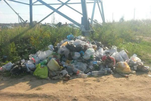 """Свалка мусора у карьера """"Бурхино"""" в Красном Пути"""