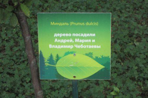 Табличка около деревьев в парке Харькова