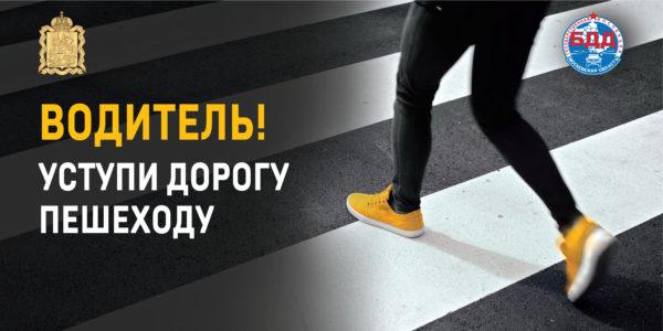 Домодедовская Госавтоинспекция проведёт профилактическую операцию  «Пешеход»