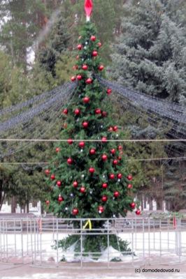 """Парк """"Елочки"""" готовится к Новому году"""