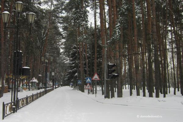 Парк «Ёлочки» зимой (5)