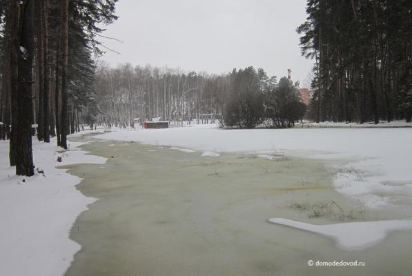 Парк «Ёлочки» зимой (15)
