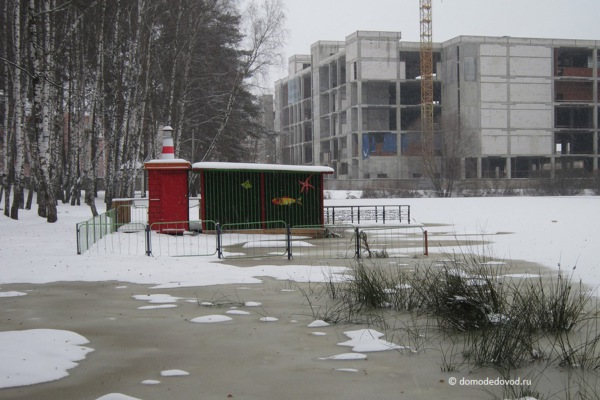 Парк «Ёлочки» зимой (14)