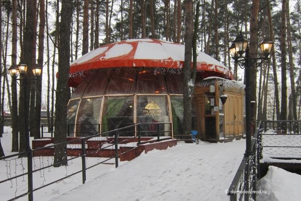 Парк «Ёлочки» зимой (17)