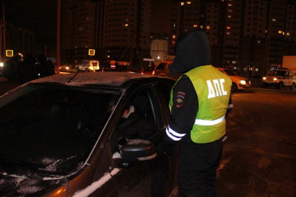 Полицейские проверки в Новом Домодедово