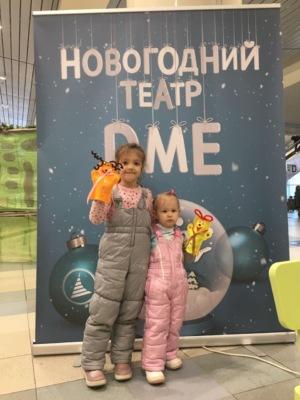 Аэропорт Домодедово подготовил серию мероприятий к Новому году