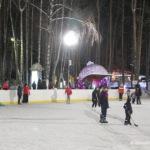 Зимний парк «Ёлочки» вечером