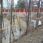 МЧС: Собрано около 15% разлившихся в реке в Домодедово нефтепродуктов