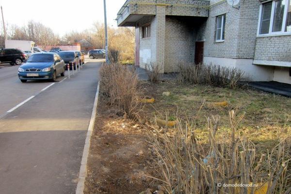 Двор. Советский проезд, д. 2 и д. 2. к. 1 (33)