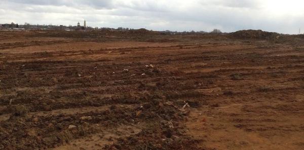 Свалка около села Домодедово ликвидирована