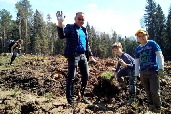 Аэропорт Домодедово посадил «Лес Победы»