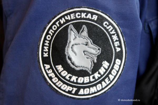 Кинологическая служба аэропорта Домодедово
