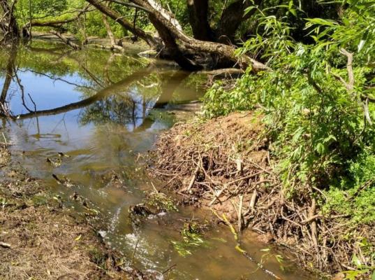 После вмешательства минэкологии восстановили русло реки