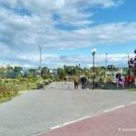 Олимпийская аллея в Домодедово. Июль 2017
