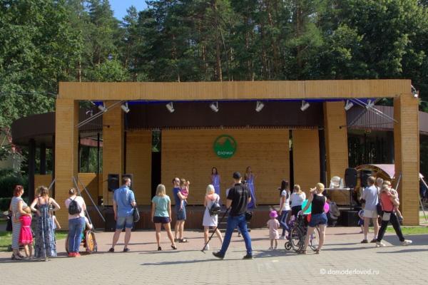 Благотворительный фестиваль в парке «Ёлочки»