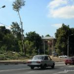 В Домодедово опять вырубают деревья