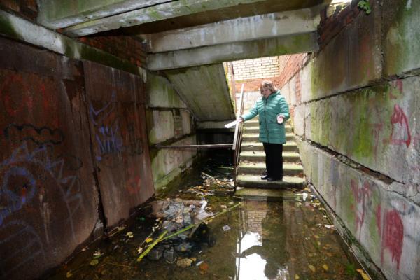 Затопленное бомбоубежище превратило жизнь домодедовцев в вонючий ад