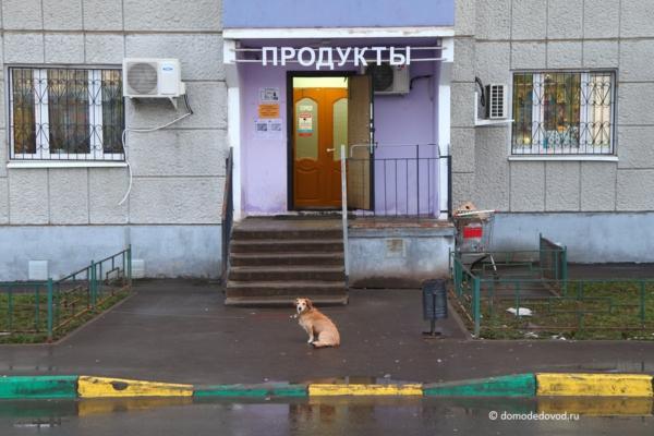 Магазин в ЖК «Домодедово Парк»