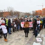 УМВД Домодедово разъясняет про митинги и пикетирования