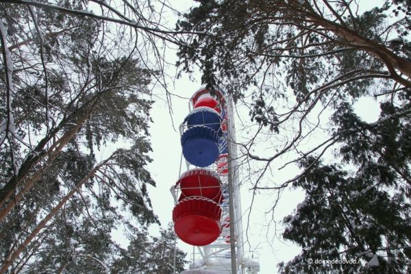 Парк Елочки зимой