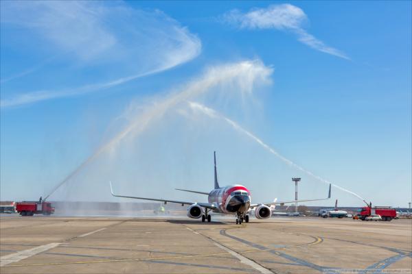 Встреча самолета Egyptair в аэропорту Домодедово. Фото: Марина Лысцева