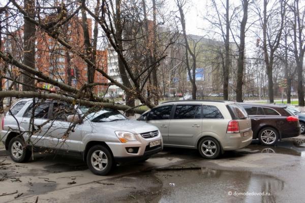 Домодедово. Последствия урагана