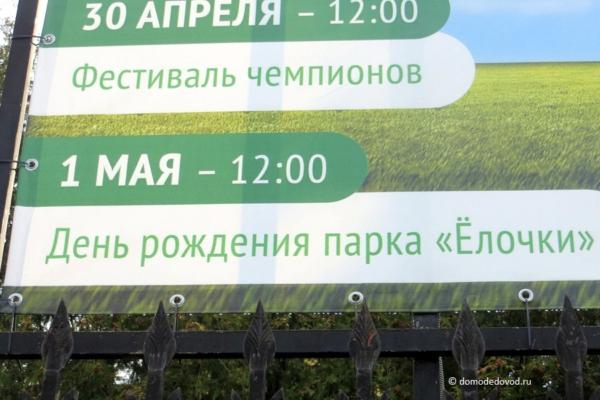 День рождения парка «Ёлочки»