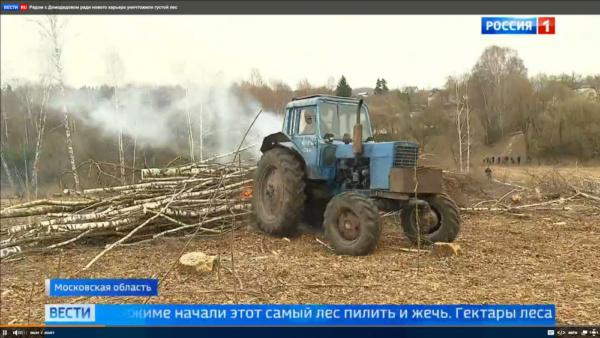 Вырубка деревьев для песчаного карьера