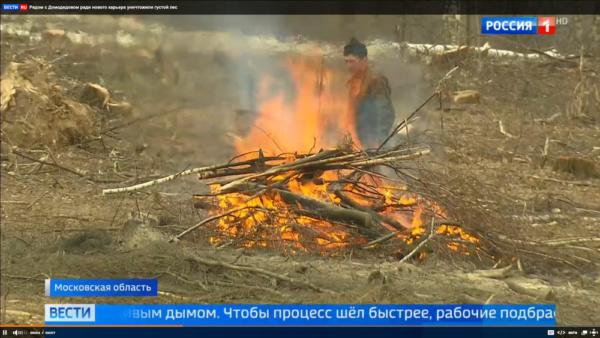 Сжигание вырубленных остатков