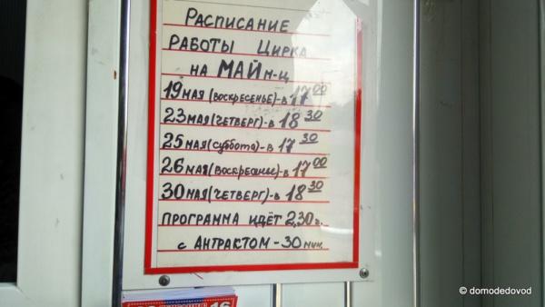 Цирк в Домодедово