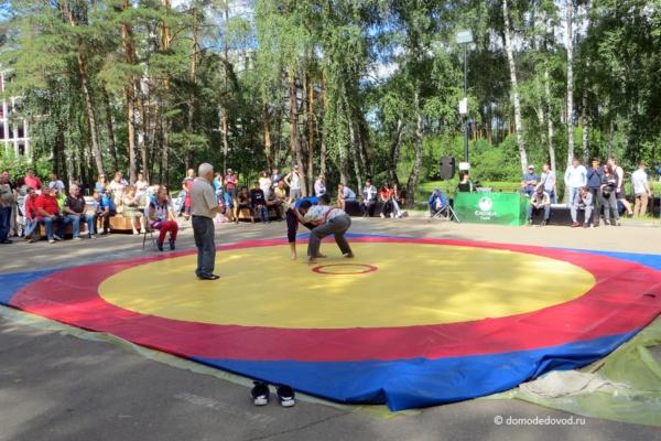 Праздник Сабантуй в Московской области (11)