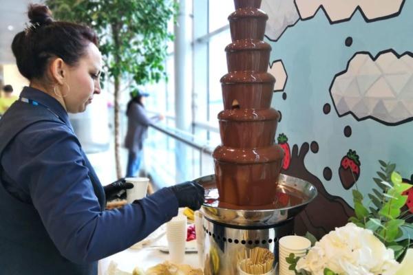 День шоколада в аэропорту Домодедово