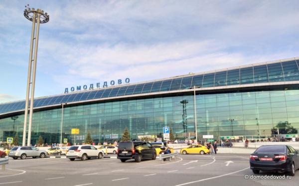 Аэропорт Домодедово. Август 2019