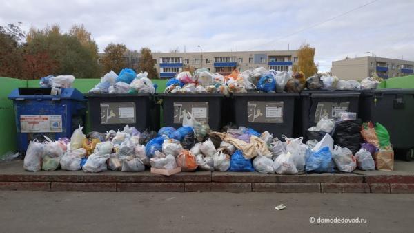 Мусор в Домодедово