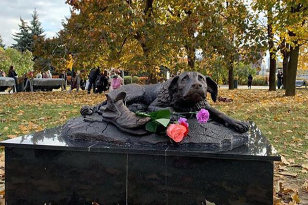 Скульптура бездомного пса