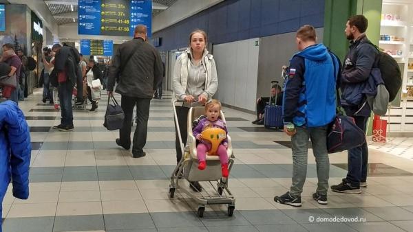 Коляски в аэропорту Домодедово