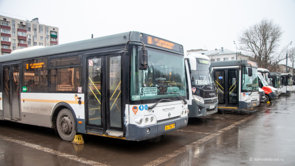 Автобусы в Домодедово