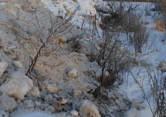 Домодедовские нарушители ответят за неисполнение предписания Минэкологии