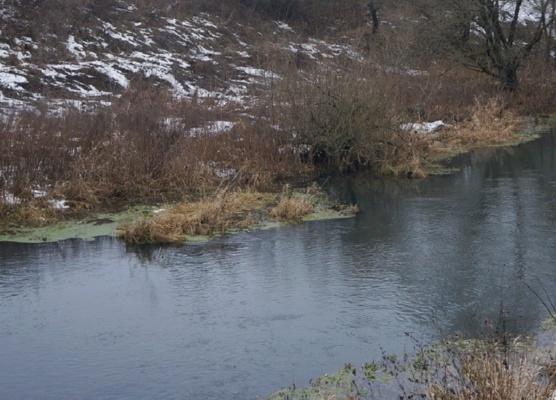 Минэкологии потребовало устранить опасность загрязнения рек в Домодедово